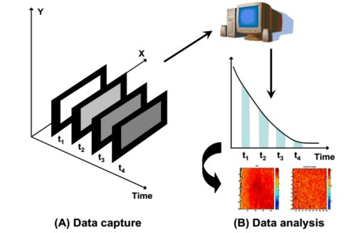 Wide-field FLIM signal collection as time delayed image sequence and analysis of 2D fluorescent lifetime map.