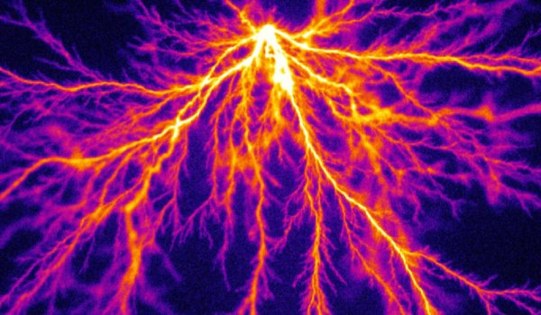 Feather-like structures in a positive streamer discharge in pure argon