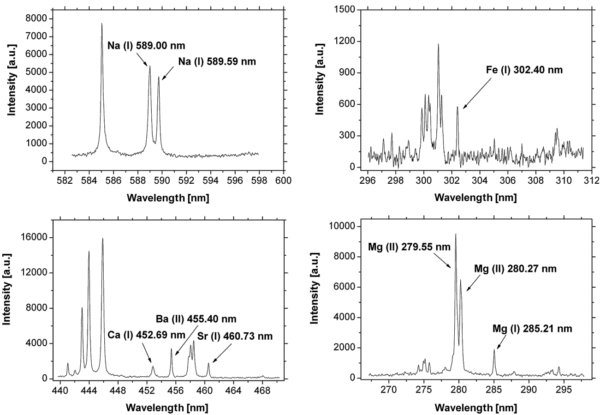 Single-shot laser induced breakdown spectroscopy (LIBS) spectra.